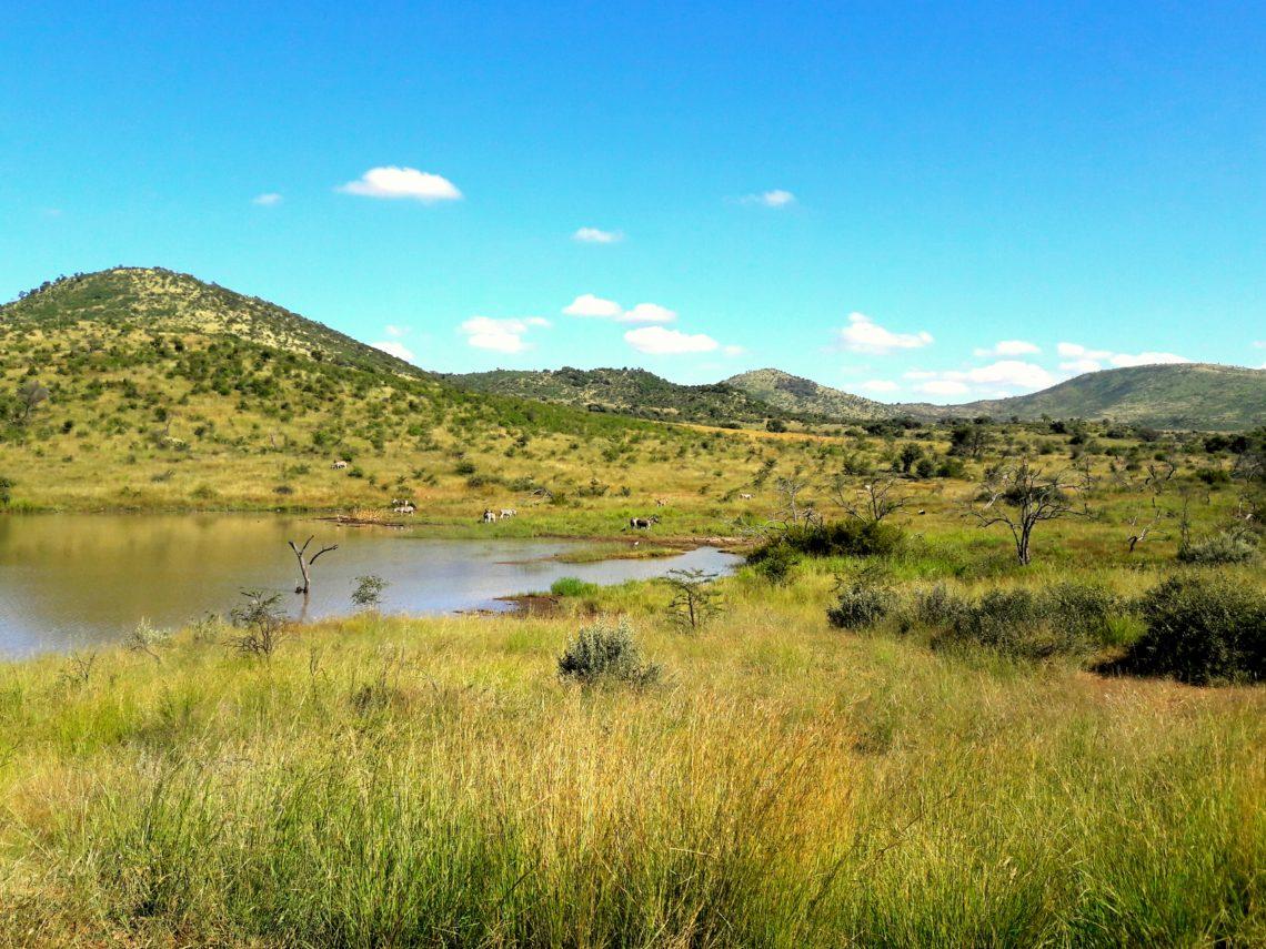 Lac Pilanesberg