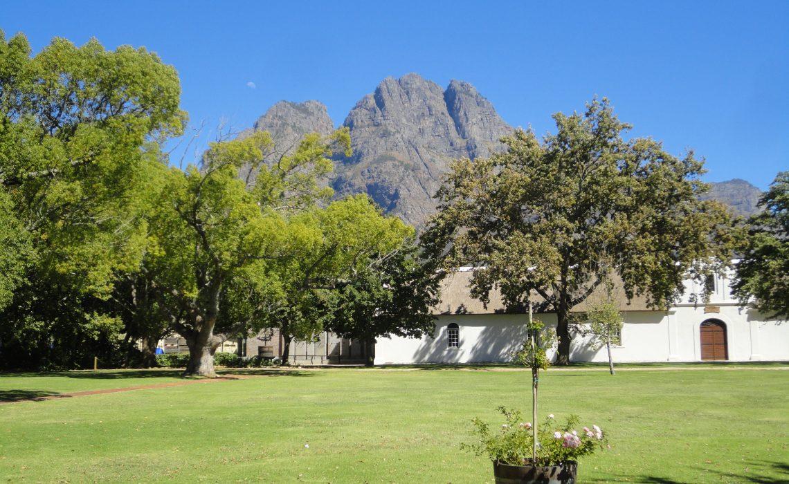 Domaine viticole Stellenbosch