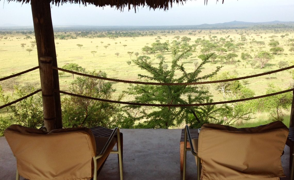 Vue panoramique sur la savane en Tanzanie