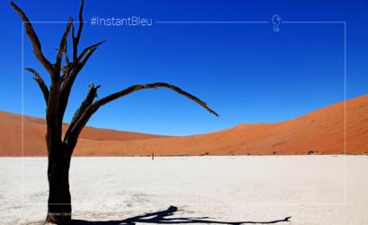 Paysage de désert de sable au Dead Vlei - fonds d'écran