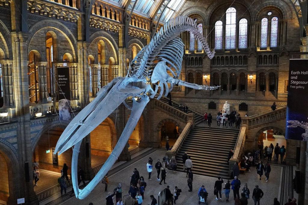 Bristish Museum de Londres